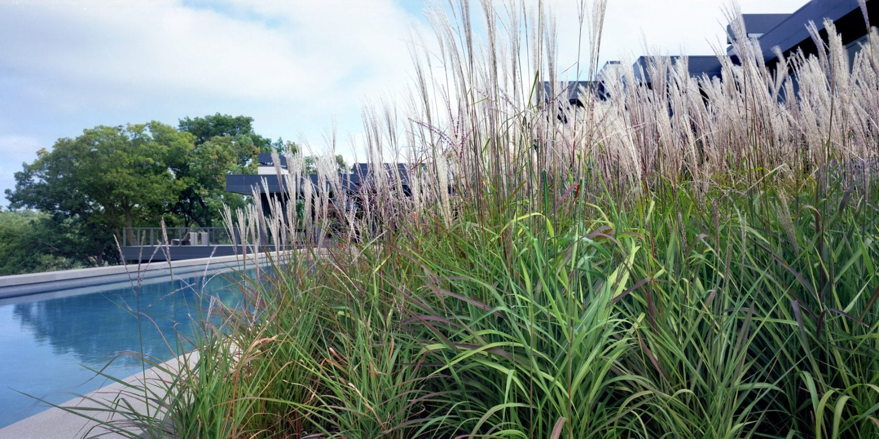 Landscaping Pool Area Ideas for Minneapolis