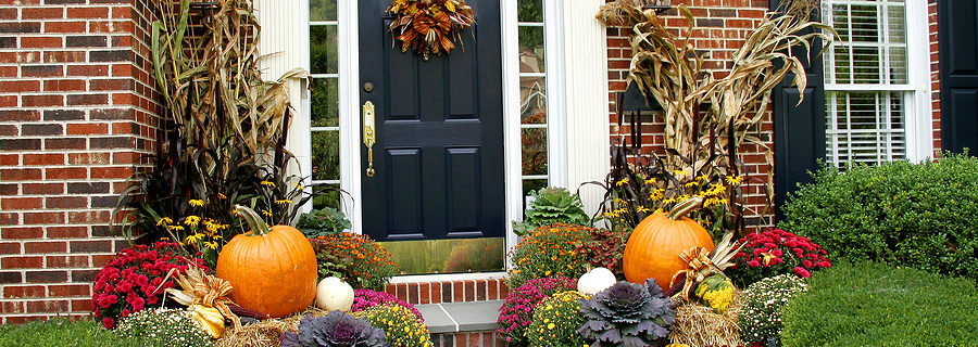 Landscaping Ideas for Minneapolis for Thanksgiving